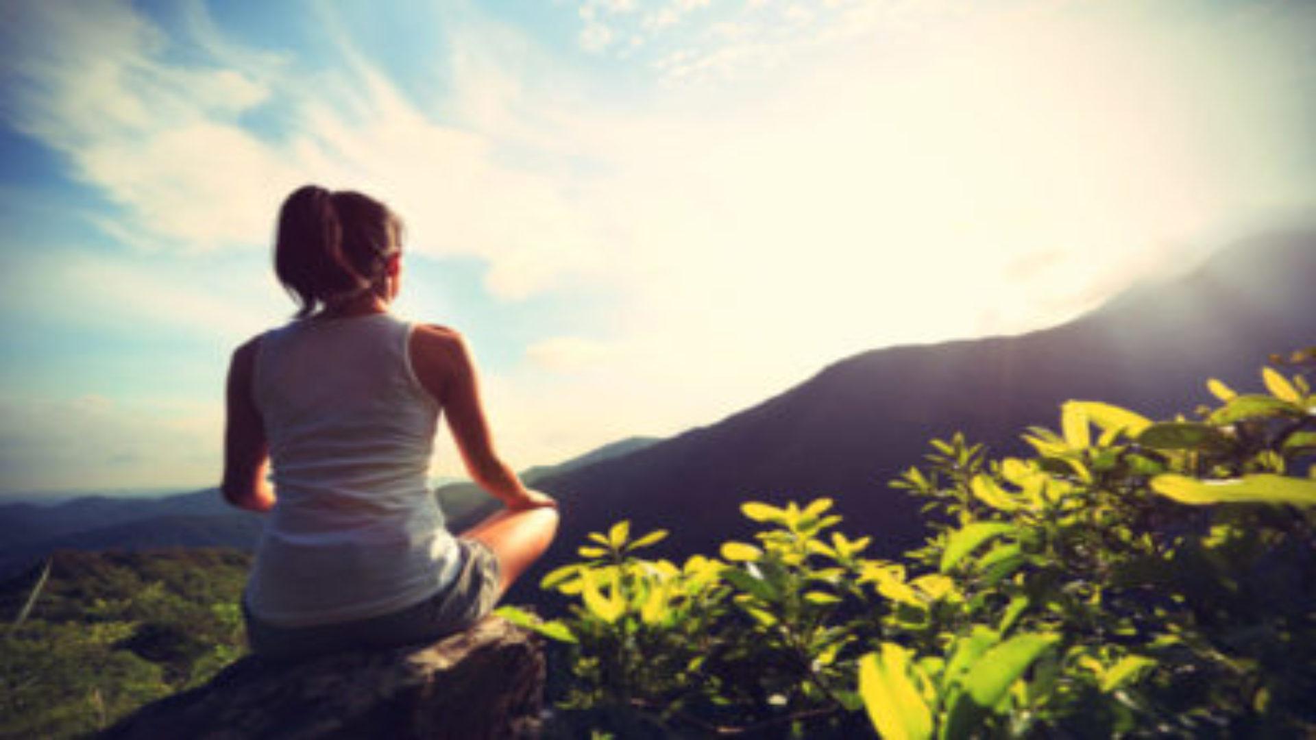 Centre de Méditation – L'Arbre de Seyr